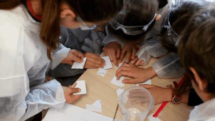 Niños colaborando en un break out científico